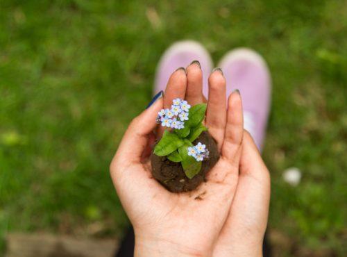 idées aménagement jardin