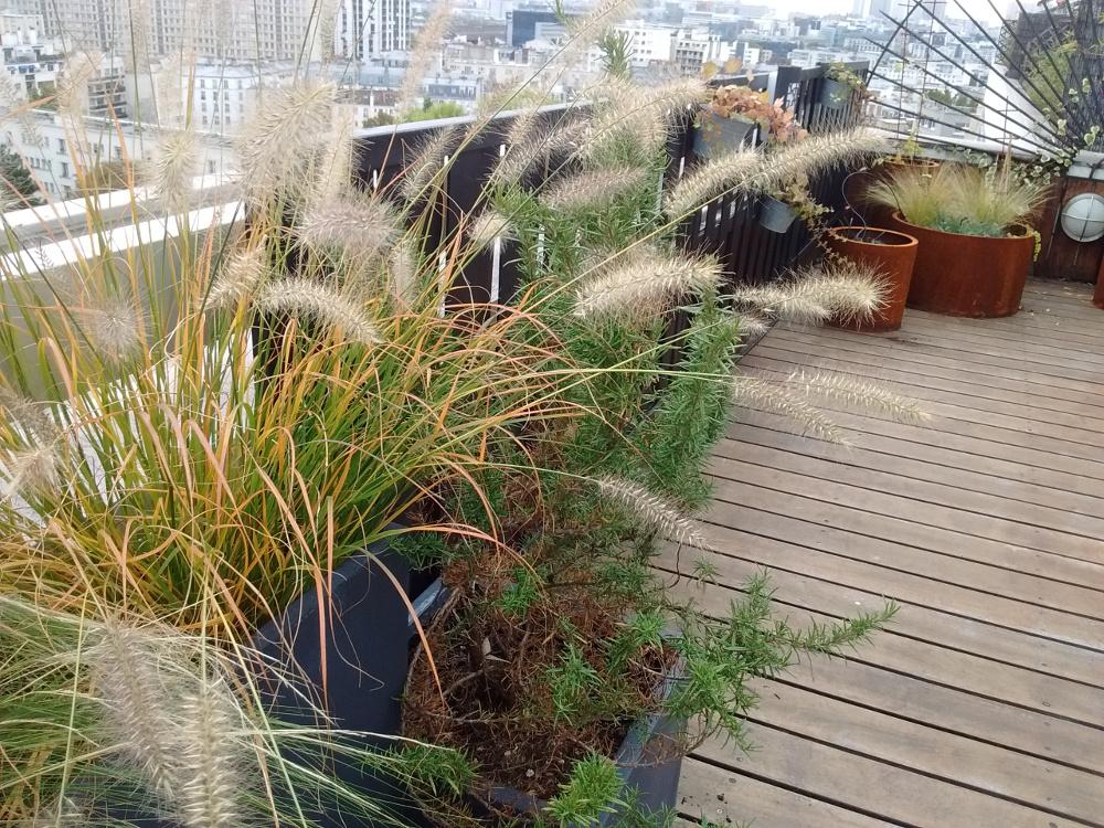 Terrasse industrielle paris un havre fleuri pour une entreprise paris art jardin - Terrasse et jardin fleuri paris ...