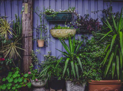 aménagement de jardin concepteur paysagiste